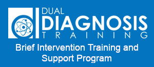 Brief Intervention Training and Support Program